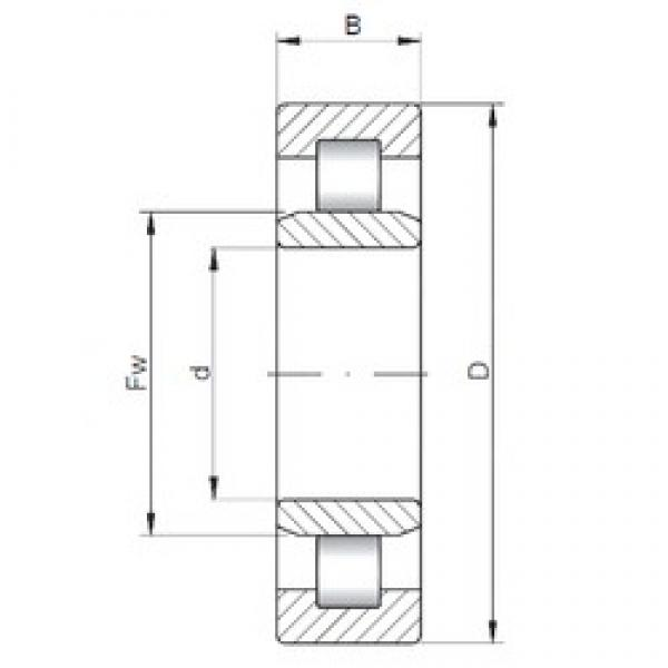 110 mm x 240 mm x 50 mm  ISO NU322 cylindrical roller bearings #2 image
