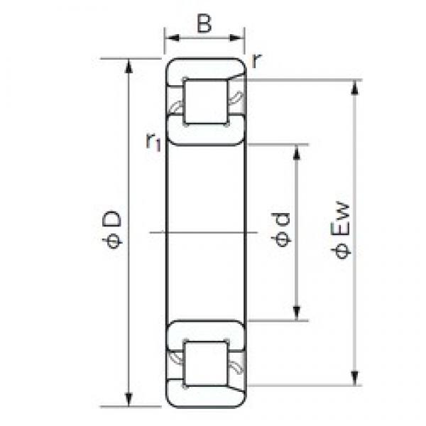 90 mm x 140 mm x 24 mm  NACHI NF 1018 cylindrical roller bearings #2 image